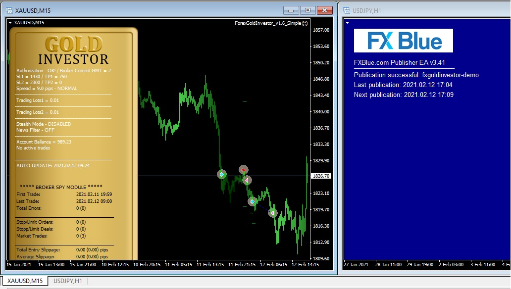 Forex Gold Investor demo test